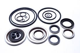SKI ENGINE SEALS AND SEAL KITS