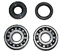 Minarelli 50cc Am6 Crank Main Bearings & Oil Seals