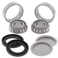 MOTORCYCLE SWINGING ARM BEARINGS