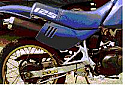 SUZUKI DR125S ALL (82-12) PREDATOR FRONT PIPE IN S/STEEL